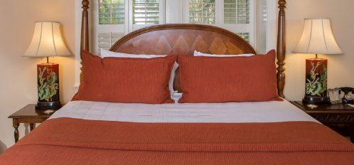 Sorgum Cane - Bed Closeup