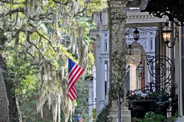 Gaze at the Oak trees draped with Spanish Moss when you take a special tour of Savannah.